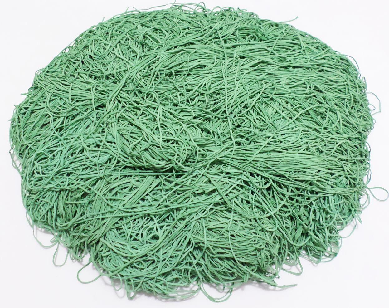 Tira de Macarrão/Espaguete 840g Verde  - Bastex Artesanatos