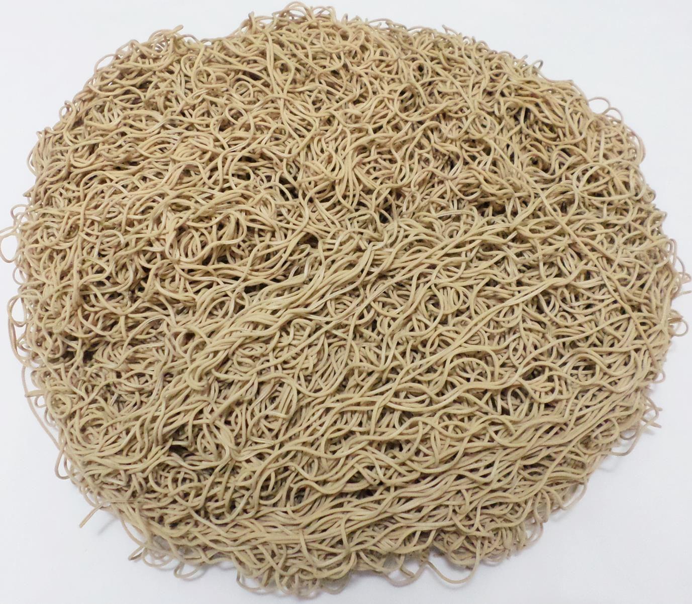 Tira de Macarrão/Espaguete 975g Bege