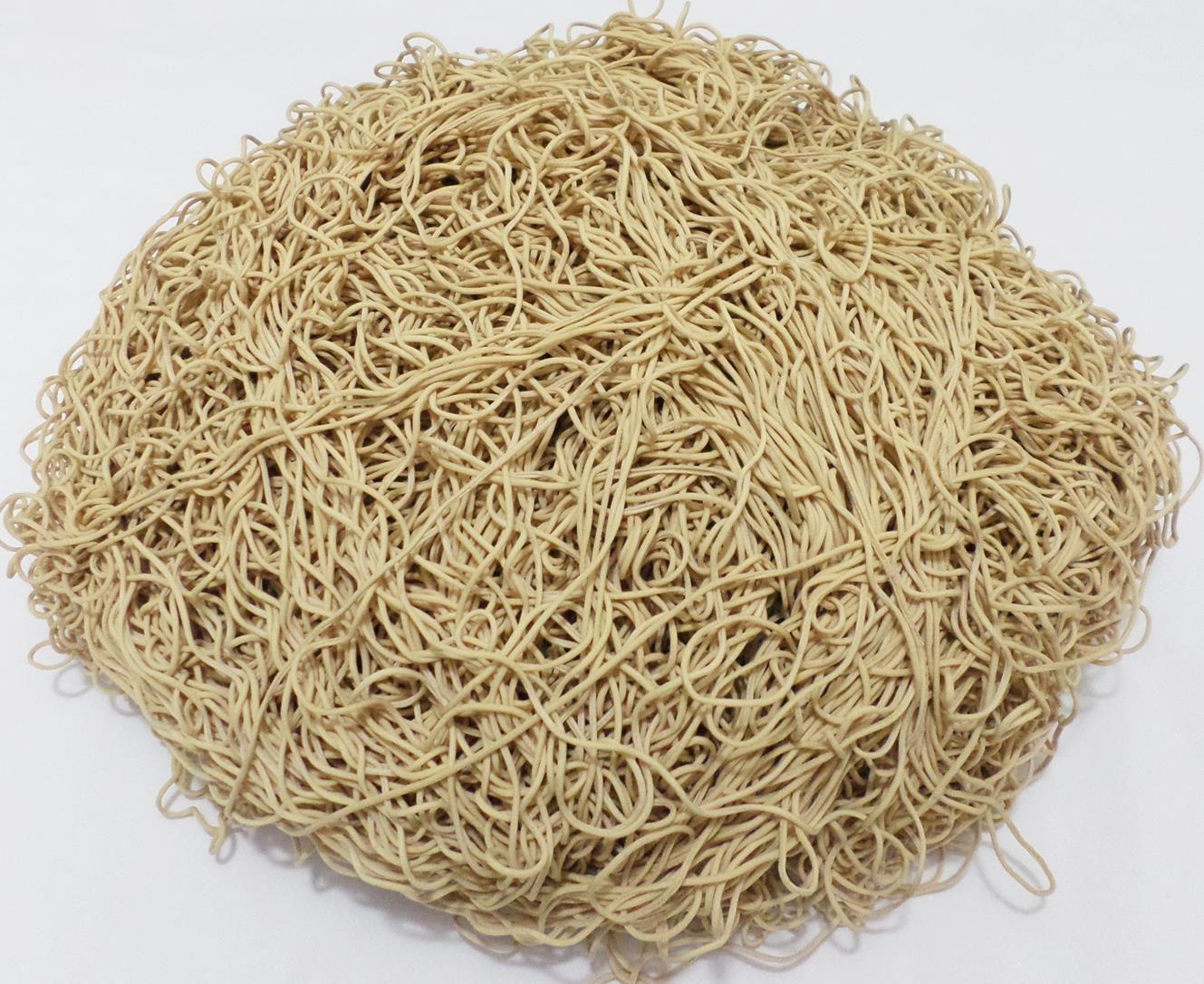 Tira de Macarrão/Espaguete 980g Bege