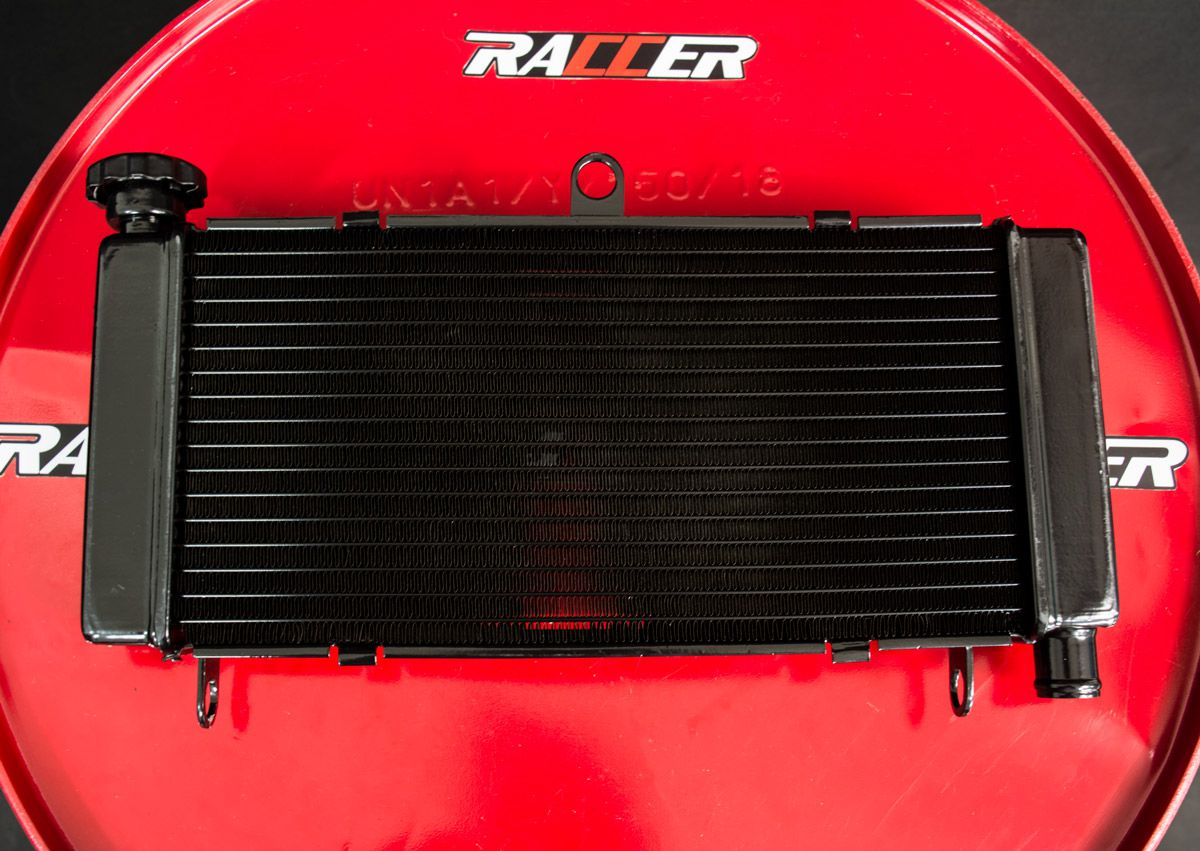 Radiador Hornet 2005-2007 + Tampa