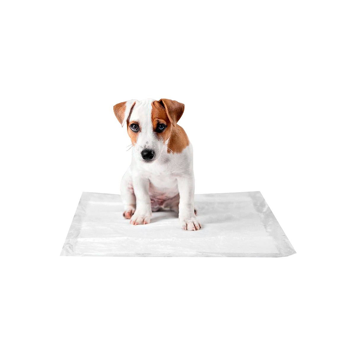 Tapete Higiênico P/ Cães Com 30 Unidades 60x60cm Até 1 Litro