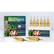 Prodibio Biodigest - Caixa 30 Ampolas
