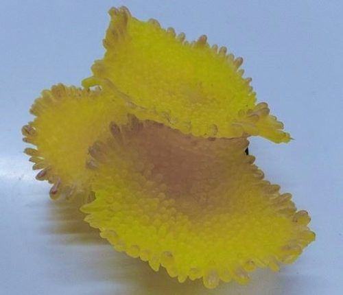 Enfeite Silicone Soma Coral Mushroom Spotted Amarelo  - FISHPET