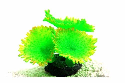 Enfeite Silicone Soma Coral Mushroom Spotted Verde  - FISHPET