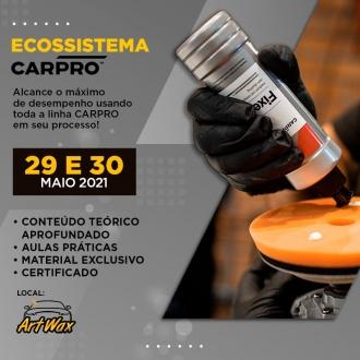 Treinamento Ecossistema Carpro 29-30/05 - Artwax Leste