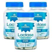 Lactase em Cápsulas - 60 cápsulas de 500mg - CHAMEL - 3 frascos