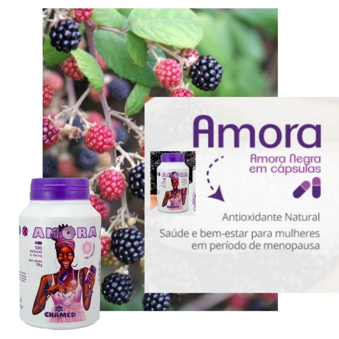 Amora Negra 3 Frascos de 100 cápsulas de 600 mg  Chamed  (Fabricante: Chamel)
