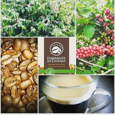 Café Diamante da Chapada - 100% Arábica Catuaí - 500g - Produzido sem uso de agrotóxicos