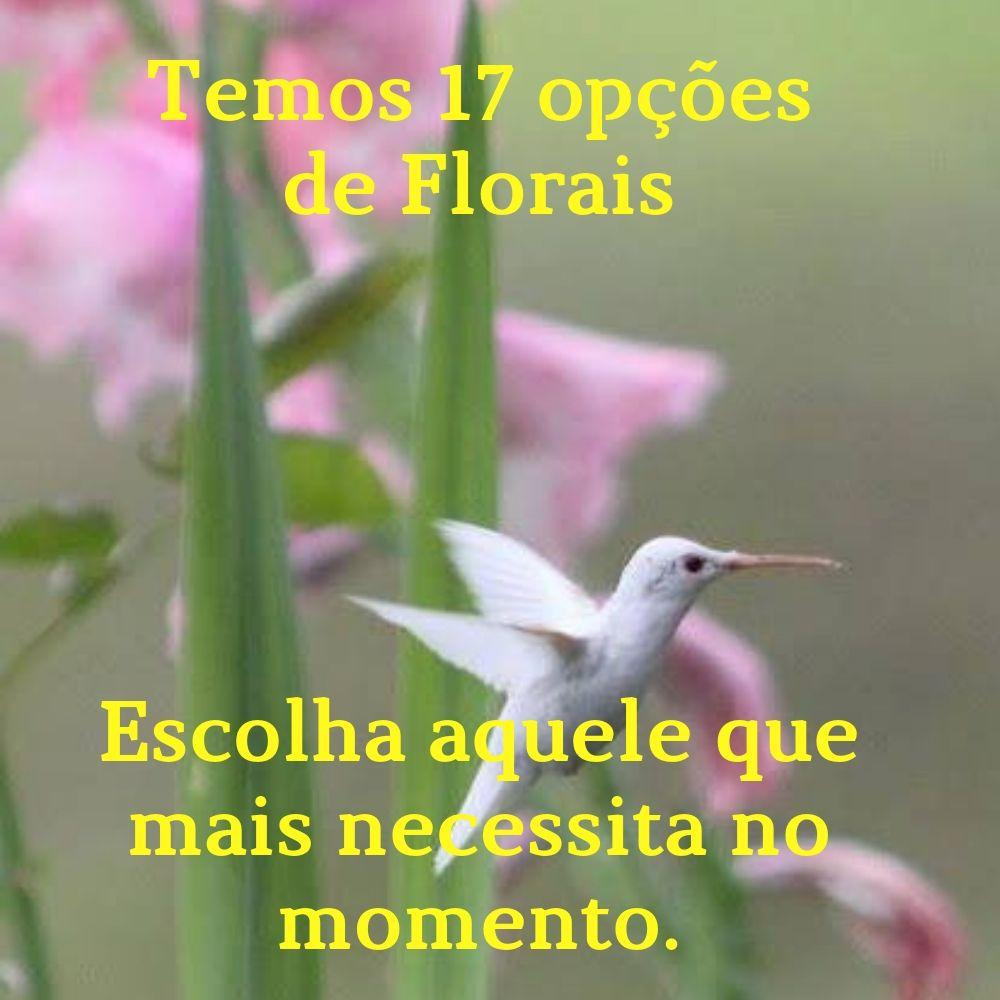 Floral -  Ansiedade -  Fórmula Ouro - Segredos da Natureza