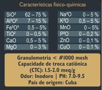 Zeoquantic® Clinoptilolita Premium Potencializada em pó - 3 pacotes de  100g (Zeólita)