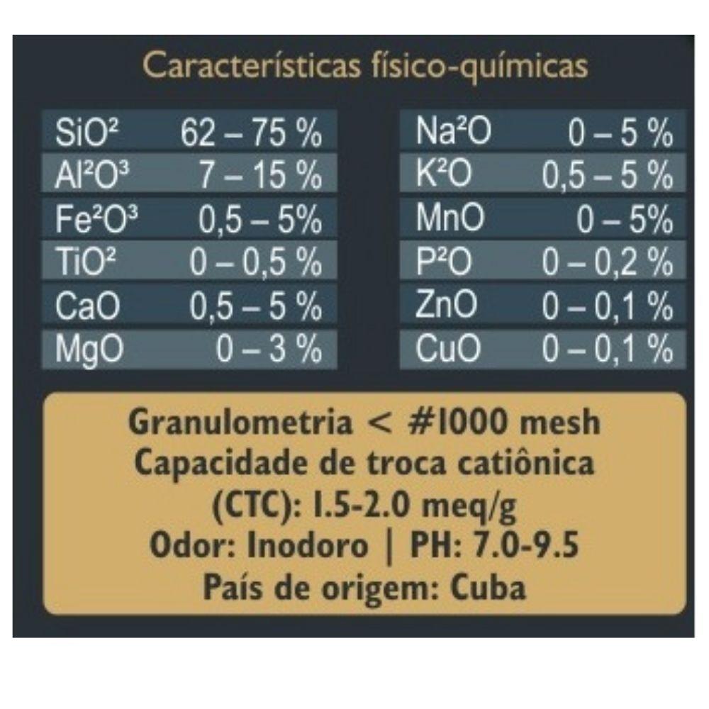 Zeoquantic® Clinoptilolita Standard Potencializada em pó 250g   (Zeólita)