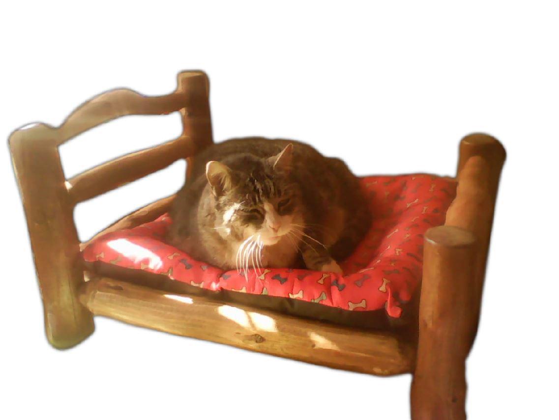 Cama Pet Mini Para Cachorros Gatos em Madeira Rústica 45 x 33cm