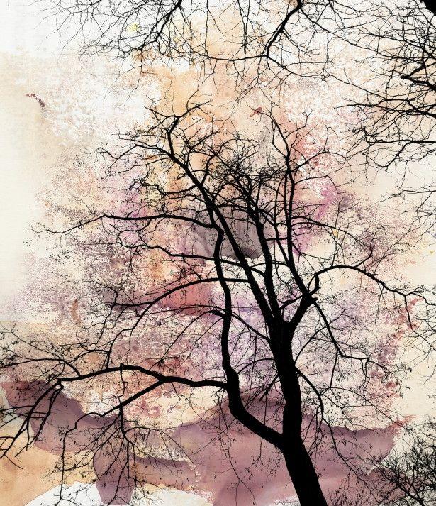 Mural de Parede Árvore Galhos Seco Aquarela 811B4B