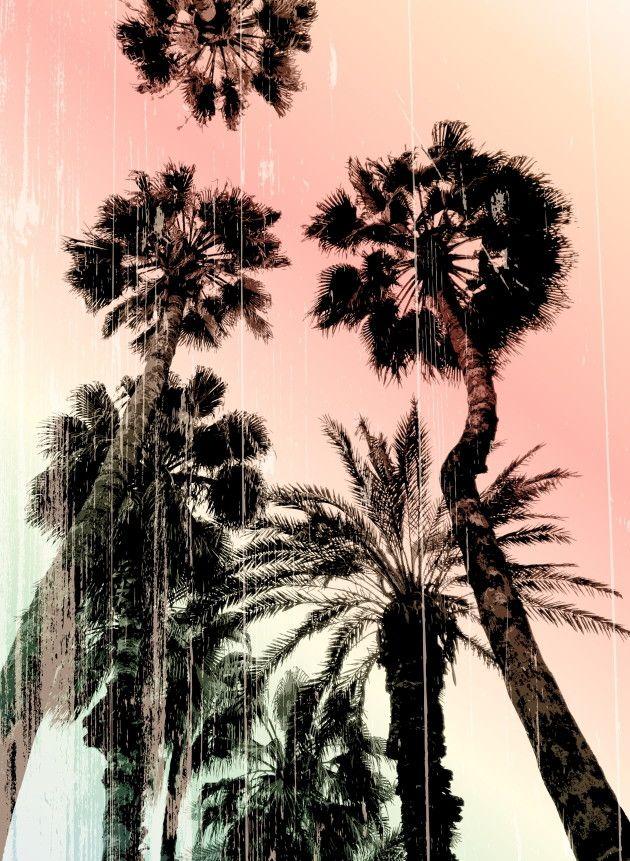 Mural de Parede Árvores 811B9E