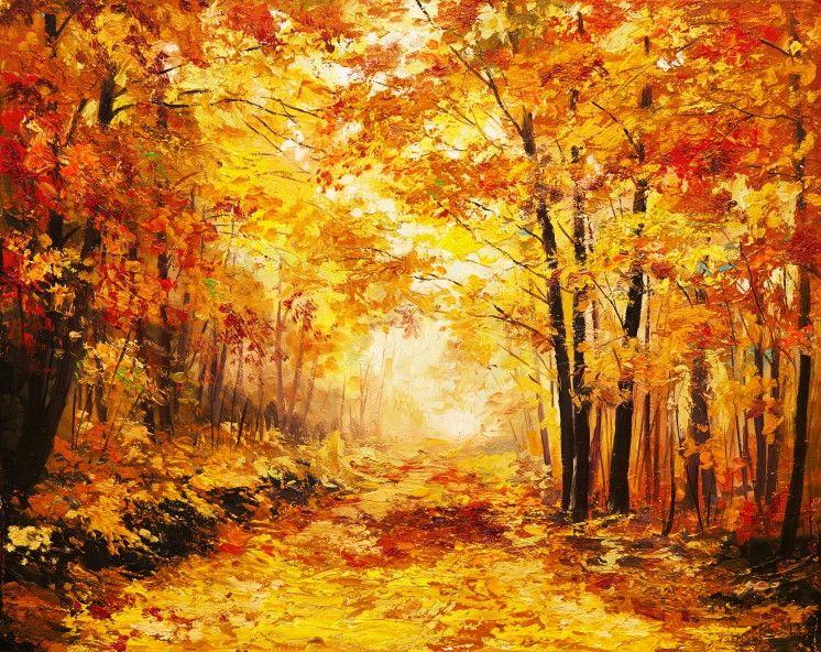 Mural de Parede Árvores Floresta 411F2F