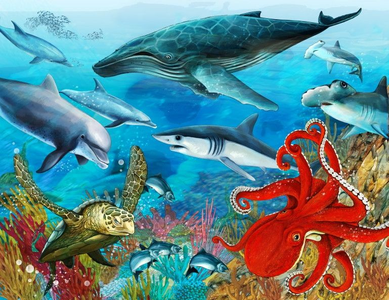Mural de Parede Mundo Marinho Fundo do Mar Oceano Baleia, Tubarões e Polvo 663E0A