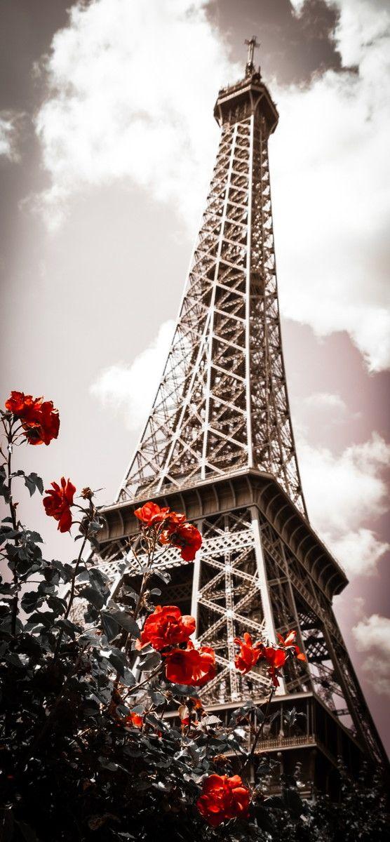 Mural de Parede Paris Torre Eiffel 50CB9B