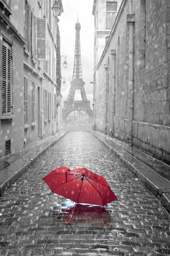 Mural de Parede Cidades Paris Torre Eiffel 443C02