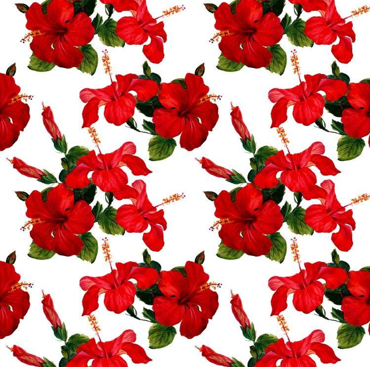 Papel de Parede Flores Floral Hibisco 6E4D2C