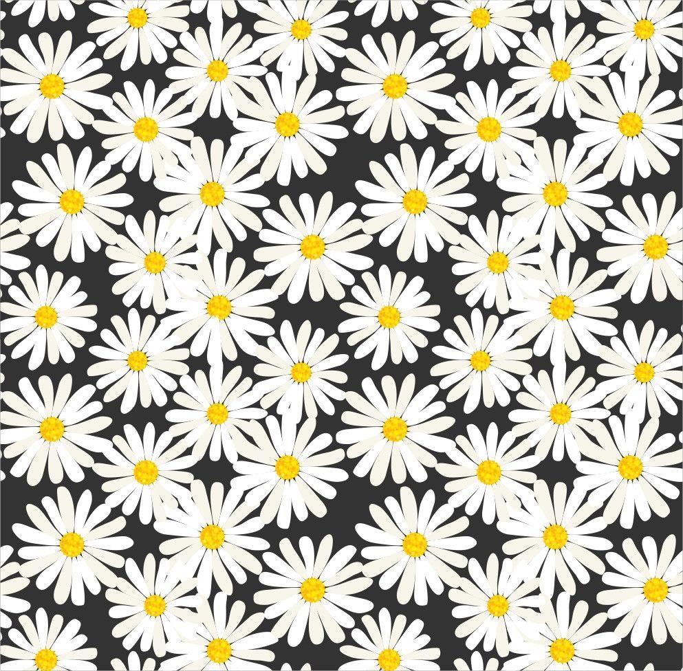 Papel de Parede Flores Florais Margaridas 51B6C4