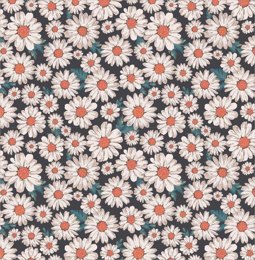 Papel de Parede Flores Floral Margaridas 48FD3F