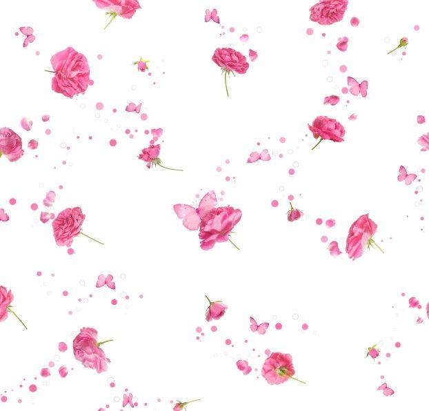 Papel de Parede Rosas e Borboletas 45133E