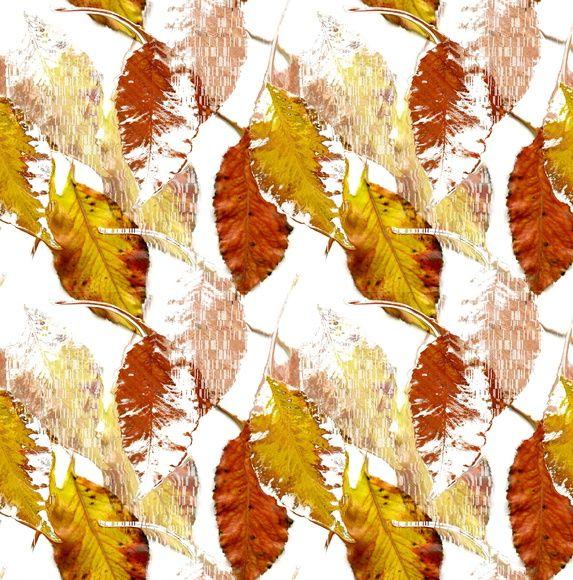 Papel de Parede Folhas Seca Outono 6D96C2