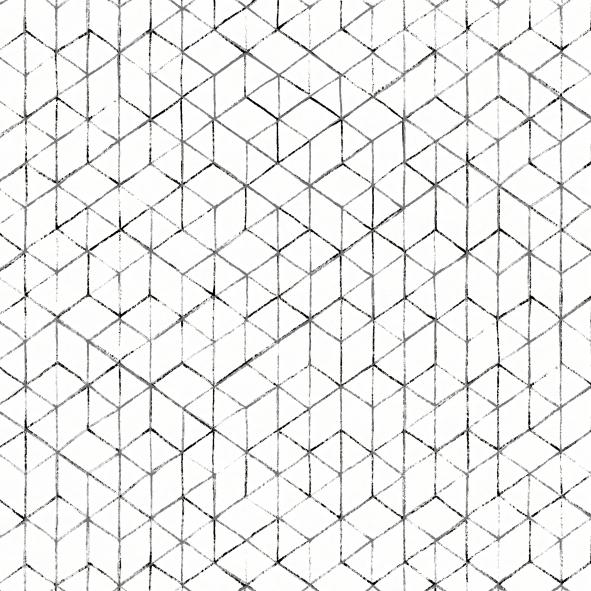 Papel de Parede Geométrico Preto e Branco 15C55C5