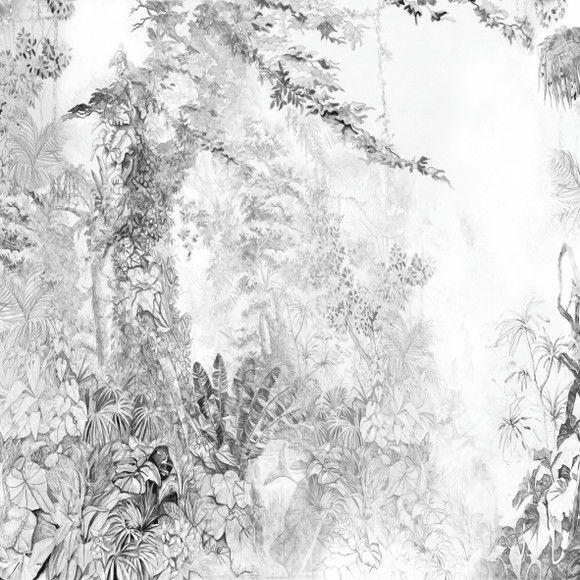 Papel de Parede Natureza Floresta Tropical 11FB995