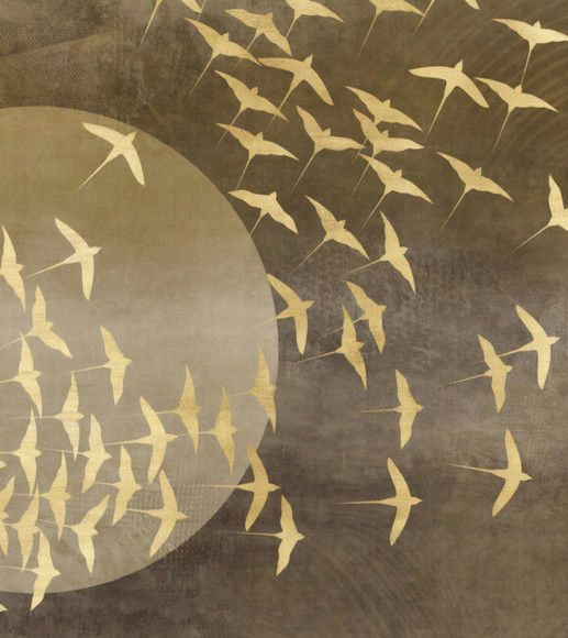 Papel de Parede Textura Pássaros 11AD207