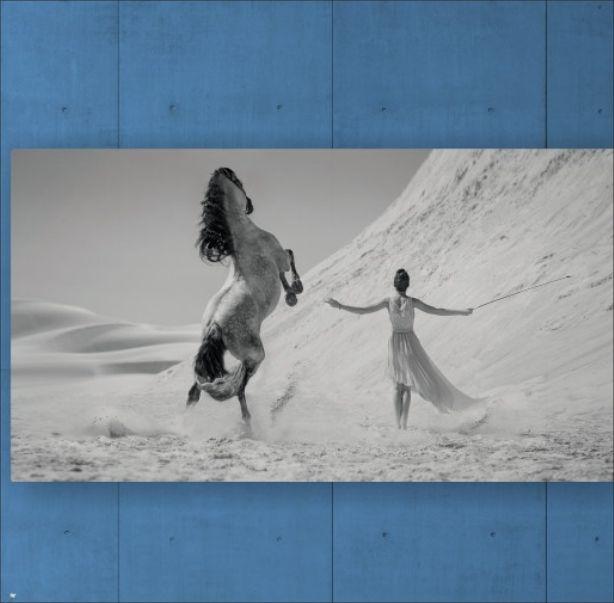 Quadro Mulher com Cavalo Branco no Deserto 4DF0DB