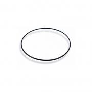 Anel de Vedação (Packing/O'ring) Casio DW-9900