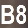 MARROM CLARO B08
