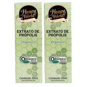 Extrato de Própolis Orgânico 30ml Honey World 2 Un