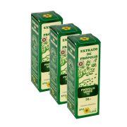 Extrato de Própolis Verde 70 Apis Flora 3 Un