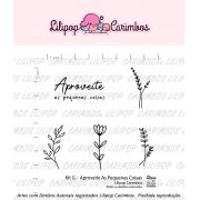 Kit de Carimbos G - Aproveite as Pequenas Coisas - Lilipop Carimbos