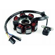 Estator Laser 150 Cc Dafra Modelo Original 8830