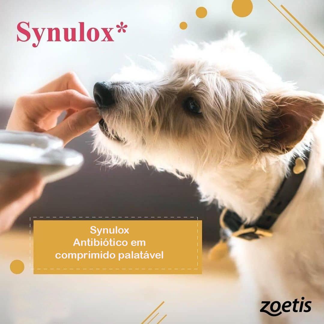 Synulox zoetis 250mg Caes E Gatos 10 Comprimidos Palataveis?