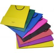 Sacola de papel colorido  - tamanho M -22x30x8 cm - 10 unidades