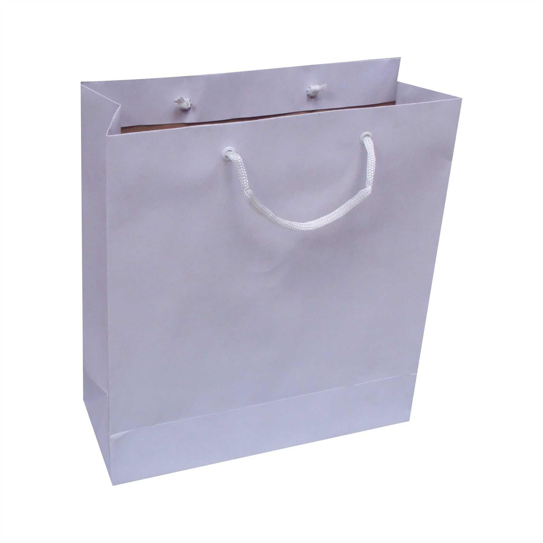 Sacola de papel kraft cor branca tamanho m - (25x28x10 cm) - 10 unidades