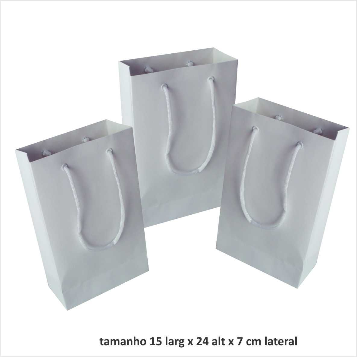 Sacola de papel kraft pequena - cor branca tamanho  - 15x24x7 cm - 10 unidades
