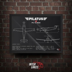 QUADRO/POSTER PILATUS PC-12 NGX