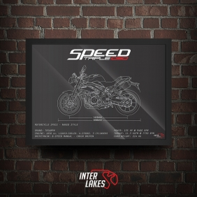 QUADRO/POSTER TRIUMPH SPEED TRIPLE 1050