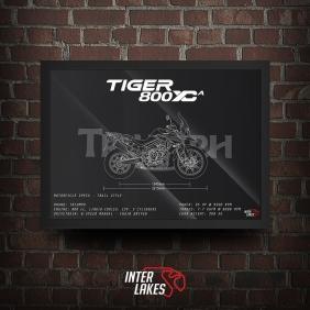 QUADRO/POSTER TRIUMPH TIGER 800 XCA 2019