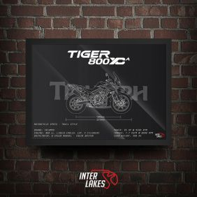 TRIUMPH TIGER 800 XCA 2019
