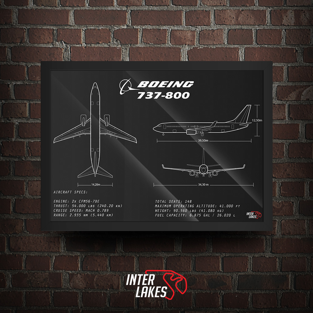 QUADRO/POSTER BOEING 737-800