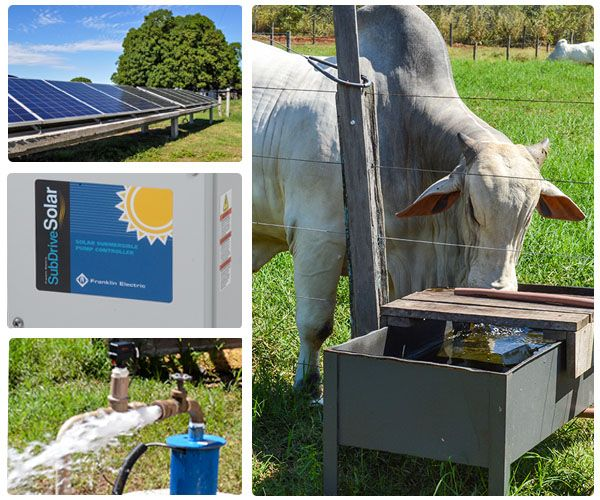 Sistema Solarpak Franklin Electric SUB150-SLS4E7  2.2KW