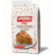 Farinha Integral Sem Glúten 500g - Aminna
