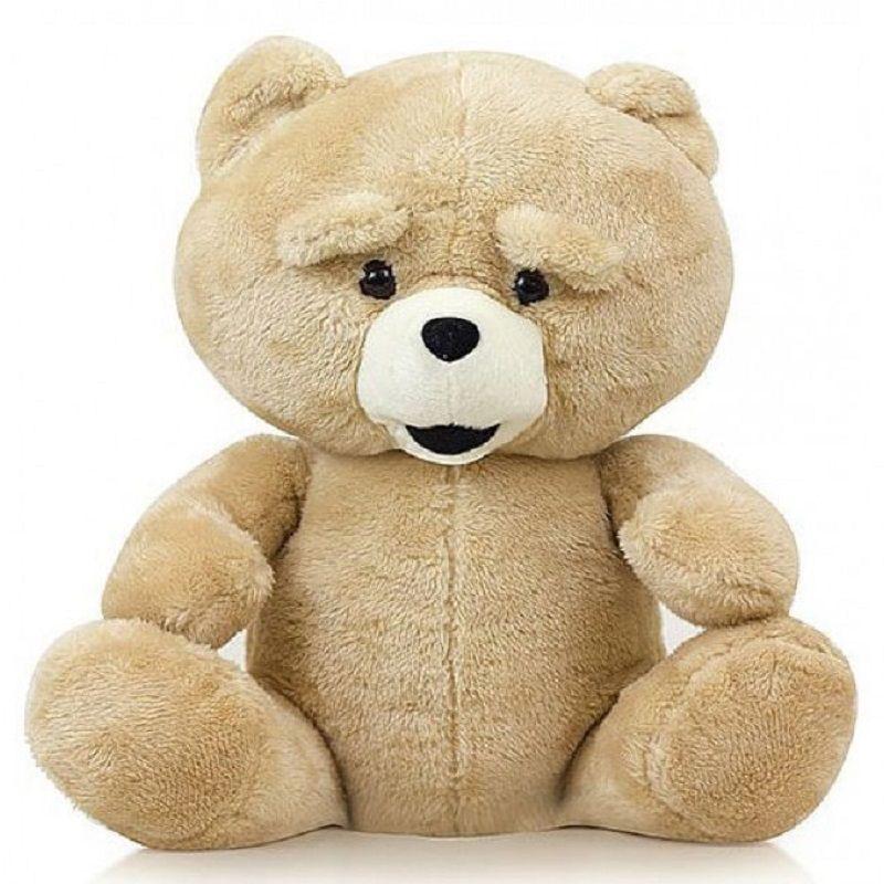 Urso de Pelúcia Ted com Compartimento Secreto - Adão & Eva