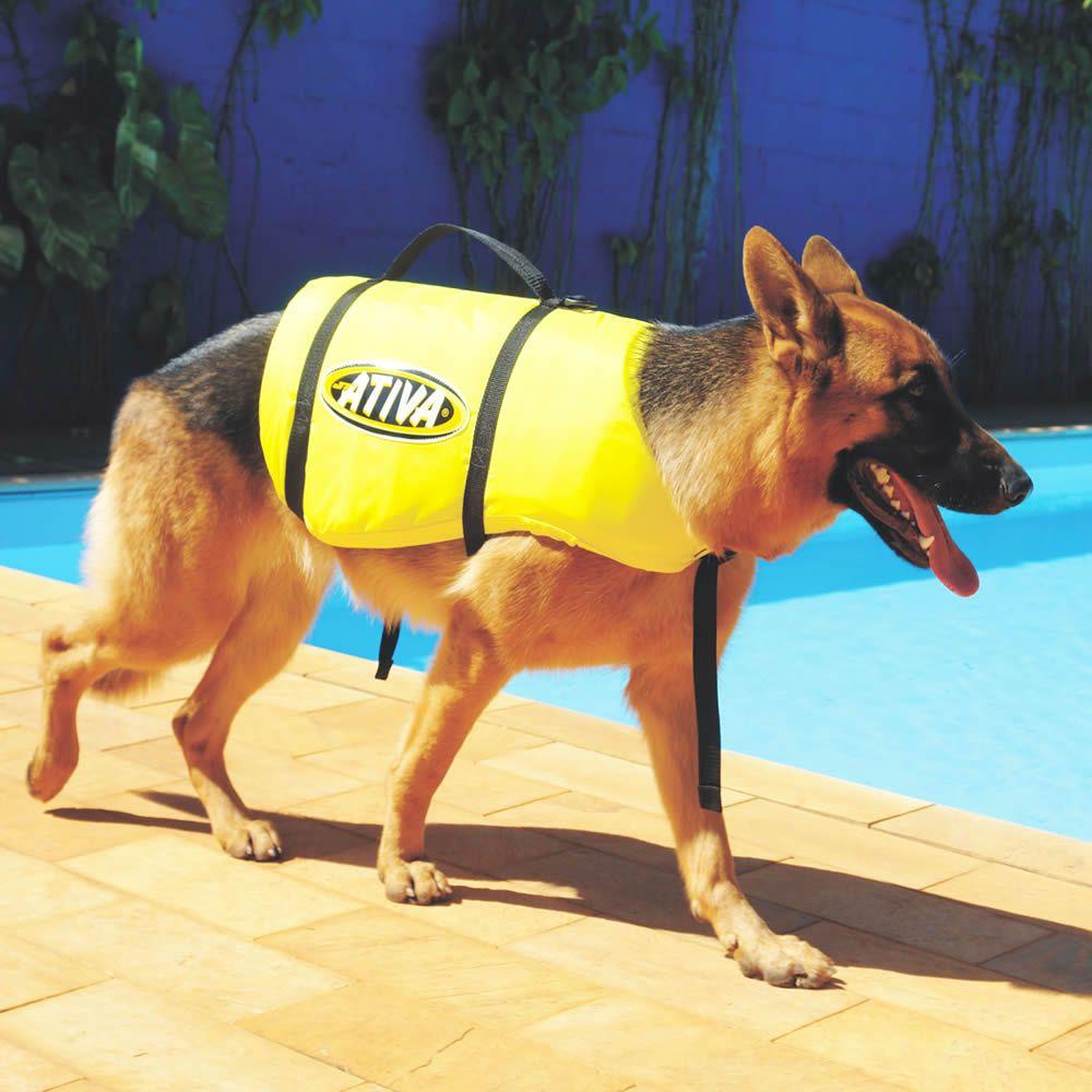 Colete Salva Vidas Jt Ativa Para Pet Tamanho M 9-18 Kg